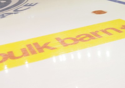 Bulk-Barn-Ice-Logo